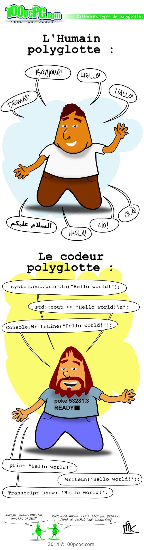 codeur polyglotte